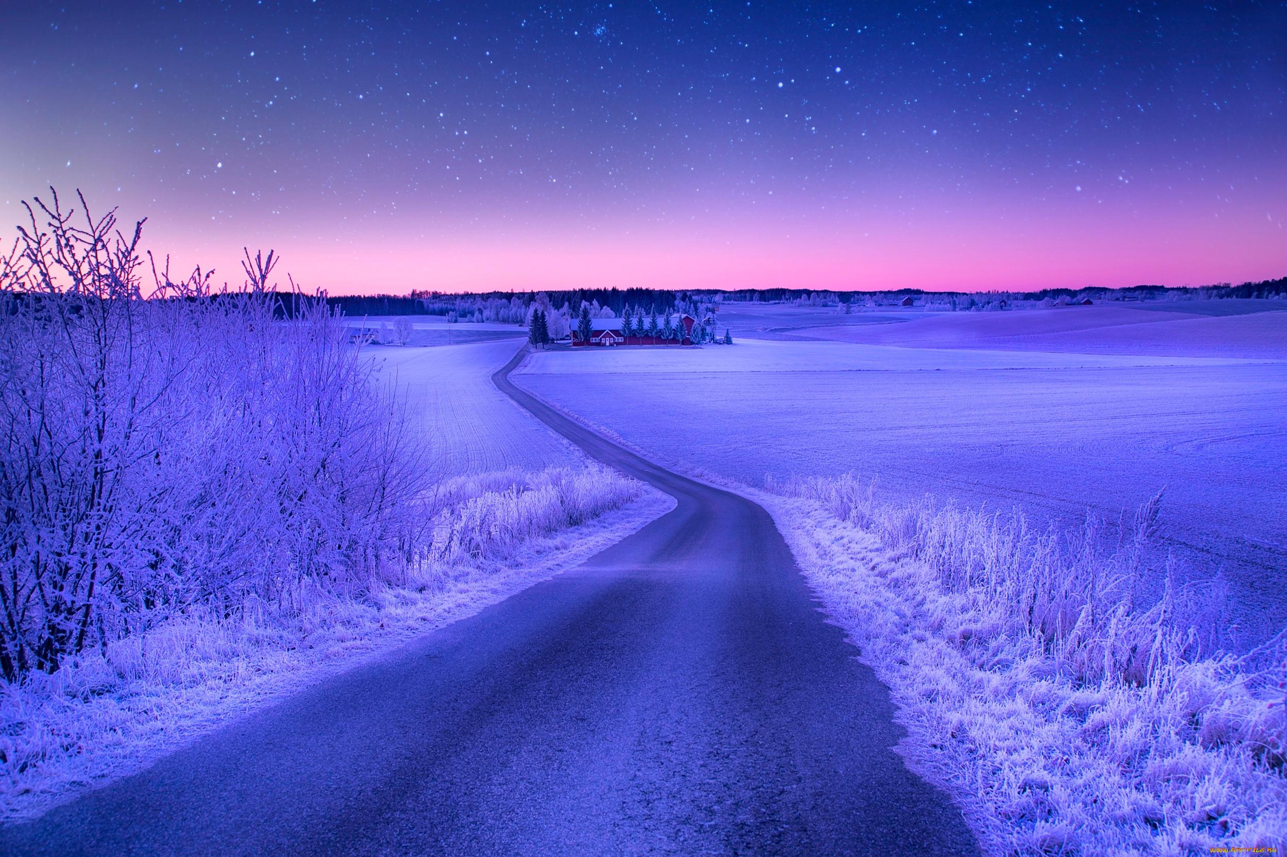 Яркая зима фото